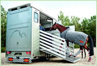 Horse Transport Network