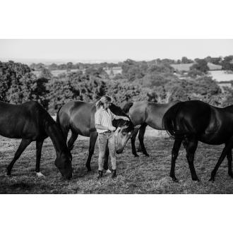 4 Happy Horses 2.jpg